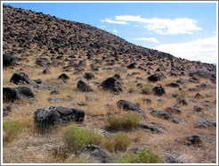 Hillside scattered with volcanic rock near the Spiral Jetty.