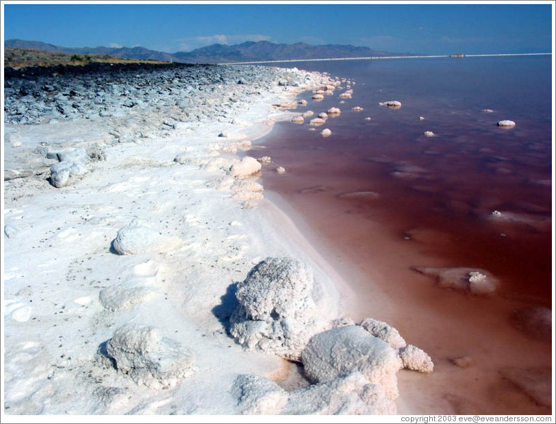 Pink water with white salt crystals, near the Spiral Jetty.