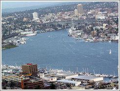 Lake Union as viewed from the Space Needle.
