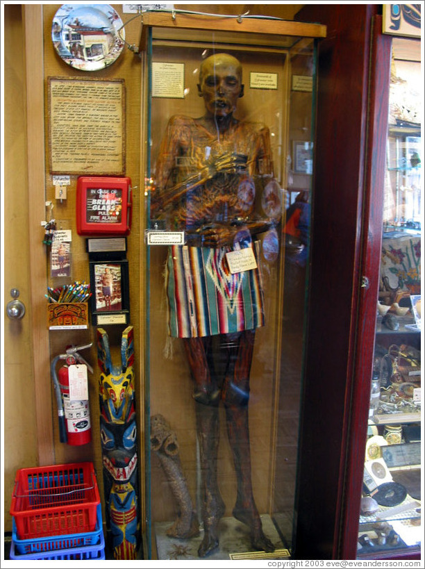 Ancient mummy at Ye Old Curiosity Shop.